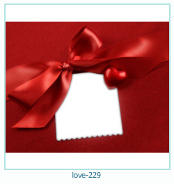 love Photo frame 229