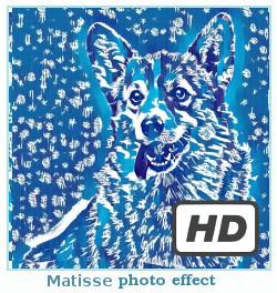 Prisma fotó hatását Matisse
