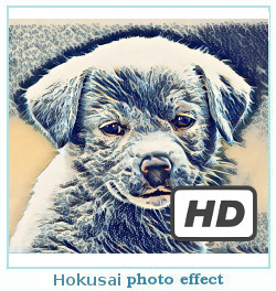 Prisma photo effect hokusai
