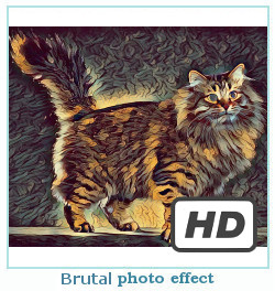 Deepdream DREAMScope photo effet brutal