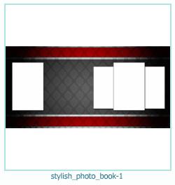 photo élégant livre 1
